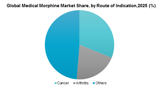 Global Medical Morphine Market Share, by Route of Indication, 2025 (%)